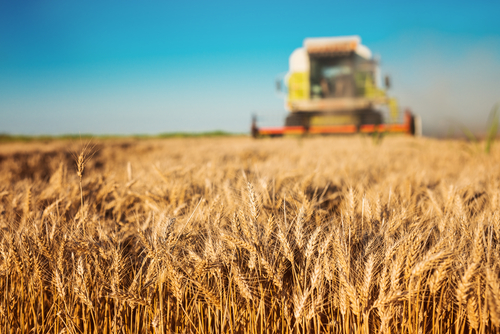 Case study: Agri-Food Sector