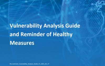 Vulnerability Analysis Guide and Reminder of Healthy Measures